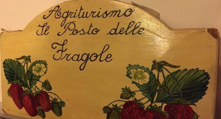 Agriturismo Il Posto delle Fragole Forlì Cesena image 9
