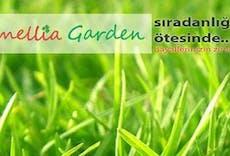 Camellia Garden