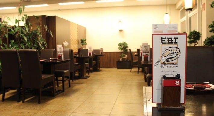 EBI 21 Vienna image 3