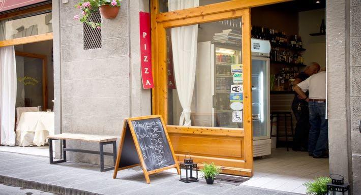 Il Giglio Sull'Arno