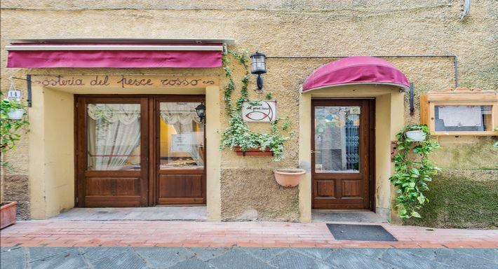 Osteria del Pesce Rosso Firenze image 1