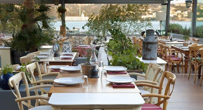 Kydonia İstanbul image 4