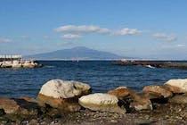 Guarda Il Menu Di Terrazza Calabritto Napoli