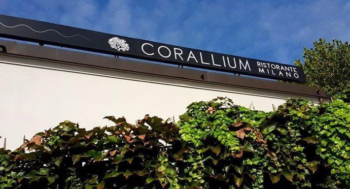 Corallium