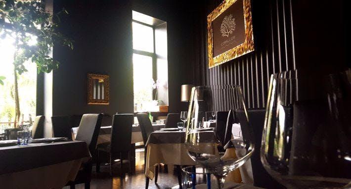 Corallium Milano image 5