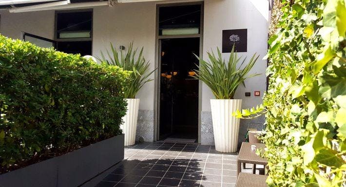 Corallium Milano image 3
