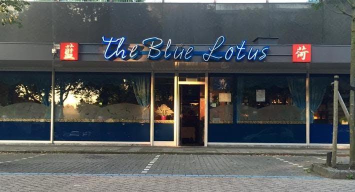 Blue Lotus Zeist Zeist image 6