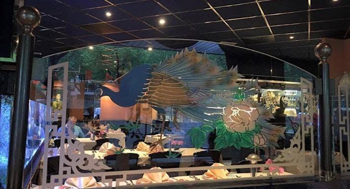 Blue Lotus Zeist Zeist image 2