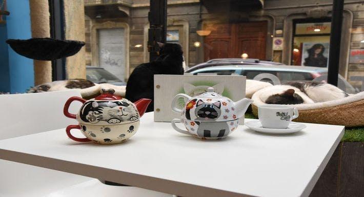 Neko Cafè Torino