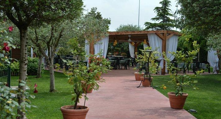 Ciccarelli Verona image 15