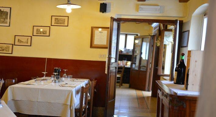 Ciccarelli Verona image 6