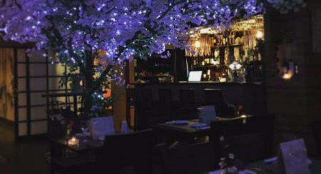 Sakura Japanese Bar Restaurant New Malden