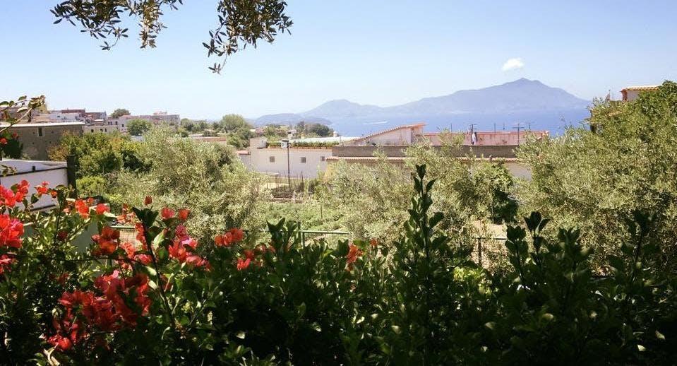 Azienda Agricola Da Innaro Naples image 3