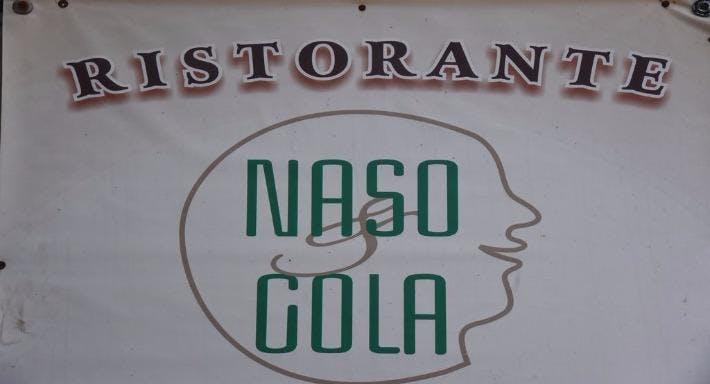 Naso & Gola