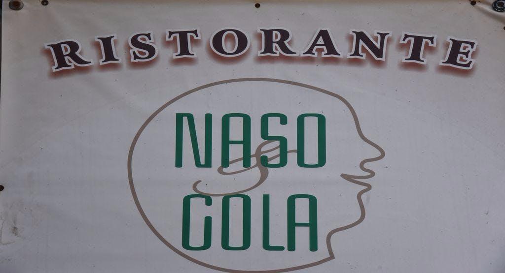 Naso & Gola Alessandria image 1