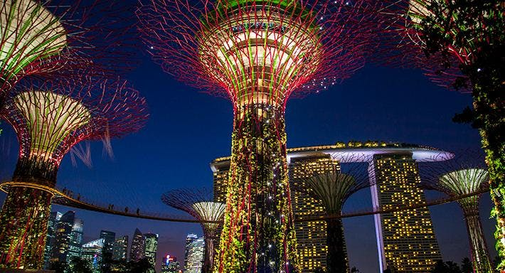 SuperTree By Indochine Singapore image 5