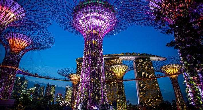 SuperTree By Indochine Singapore image 6