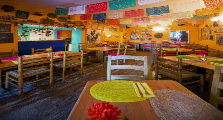 Viva Mexico Edinburgh image 4