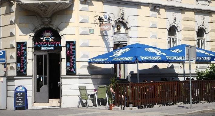 Axolotl Graz image 9