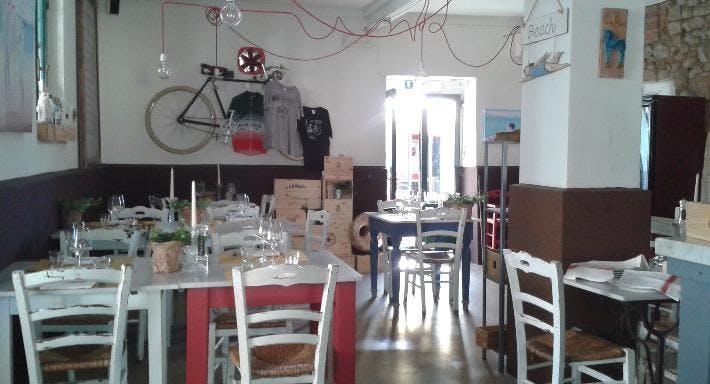 Bolgheri + Livorno image 4