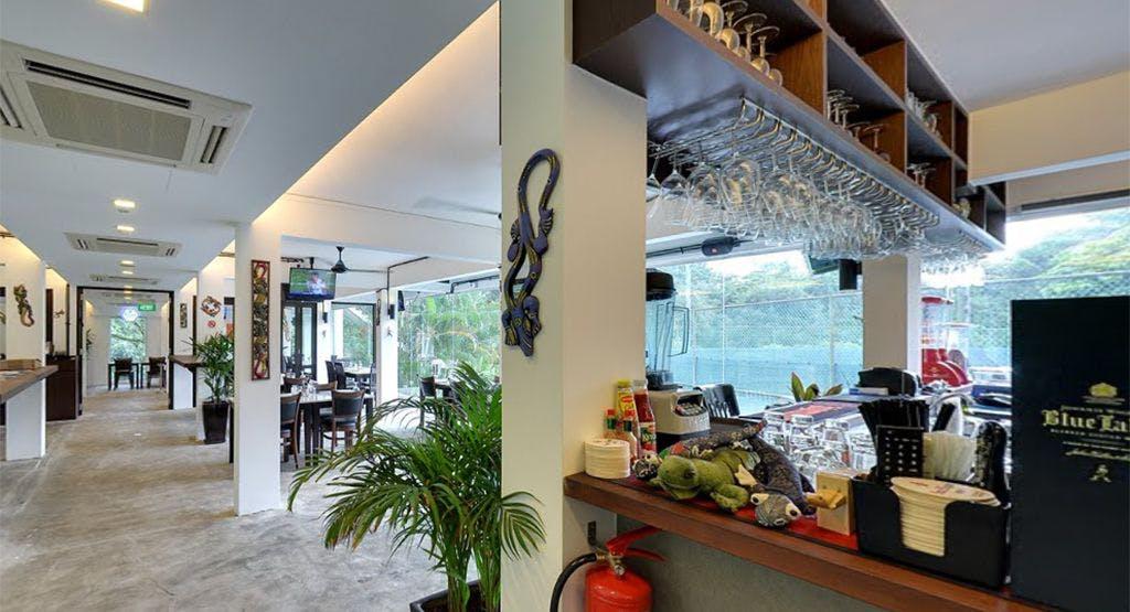 Tree Lizard Singapore image 1
