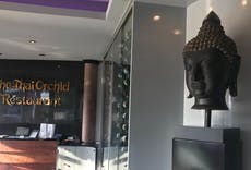 The Grand Thai Orchid