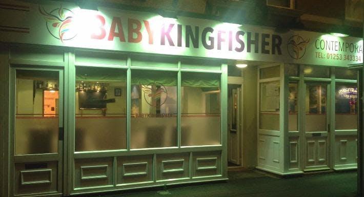 Baby Kingfisher Blackpool image 3