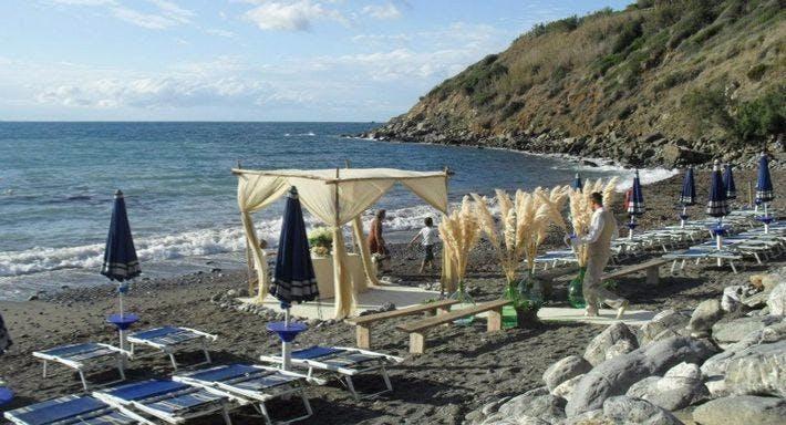 Calamoresca beach Livorno image 3