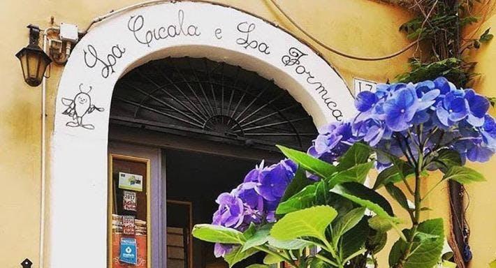 La Cicala e La Formica Rome image 2