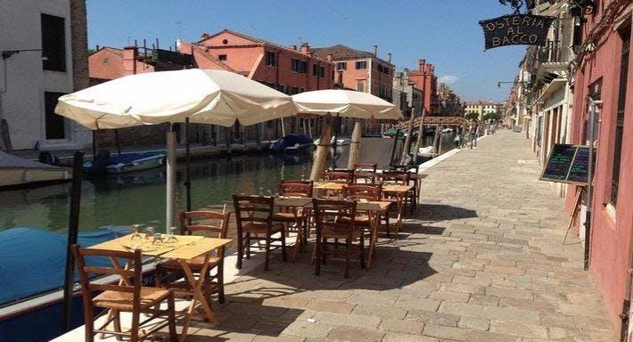 Osteria al Bacco Venezia image 7