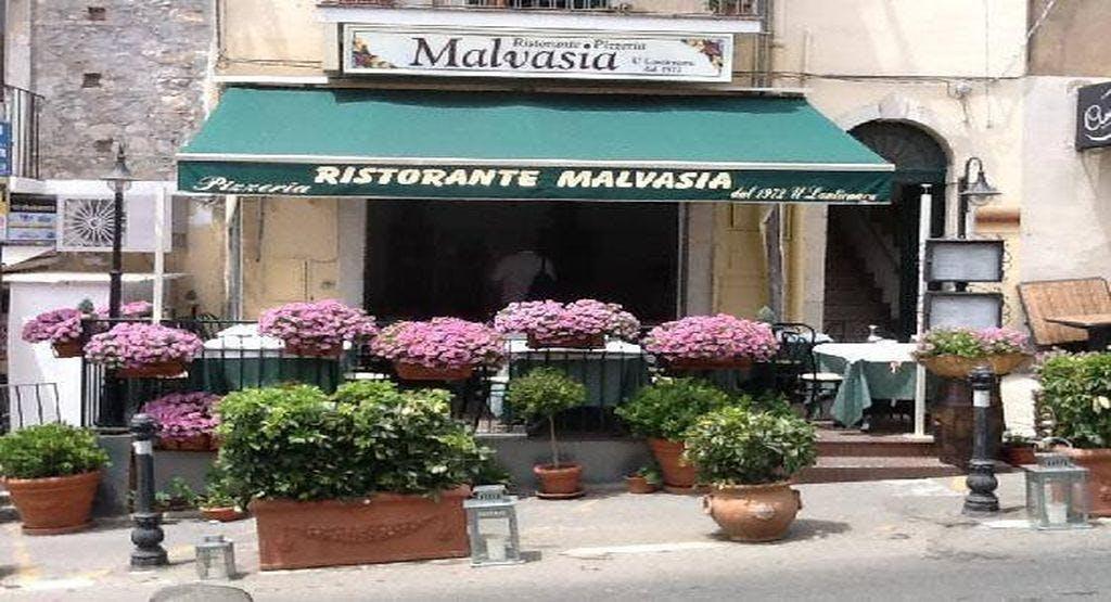 Malvasia