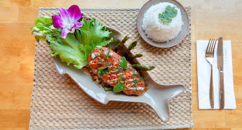Thai Orchid - Dixi