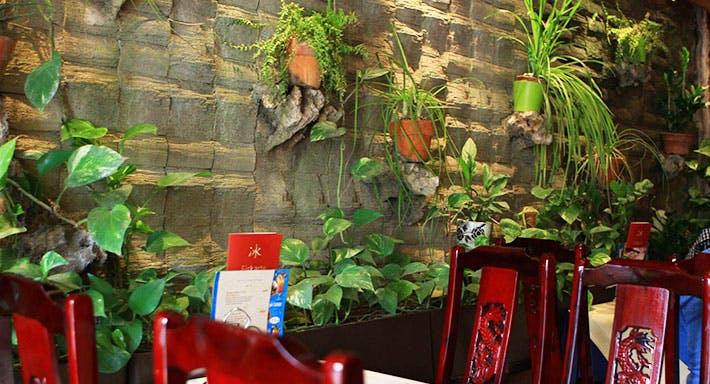 China Restaurant Dschunke Berlin image 1