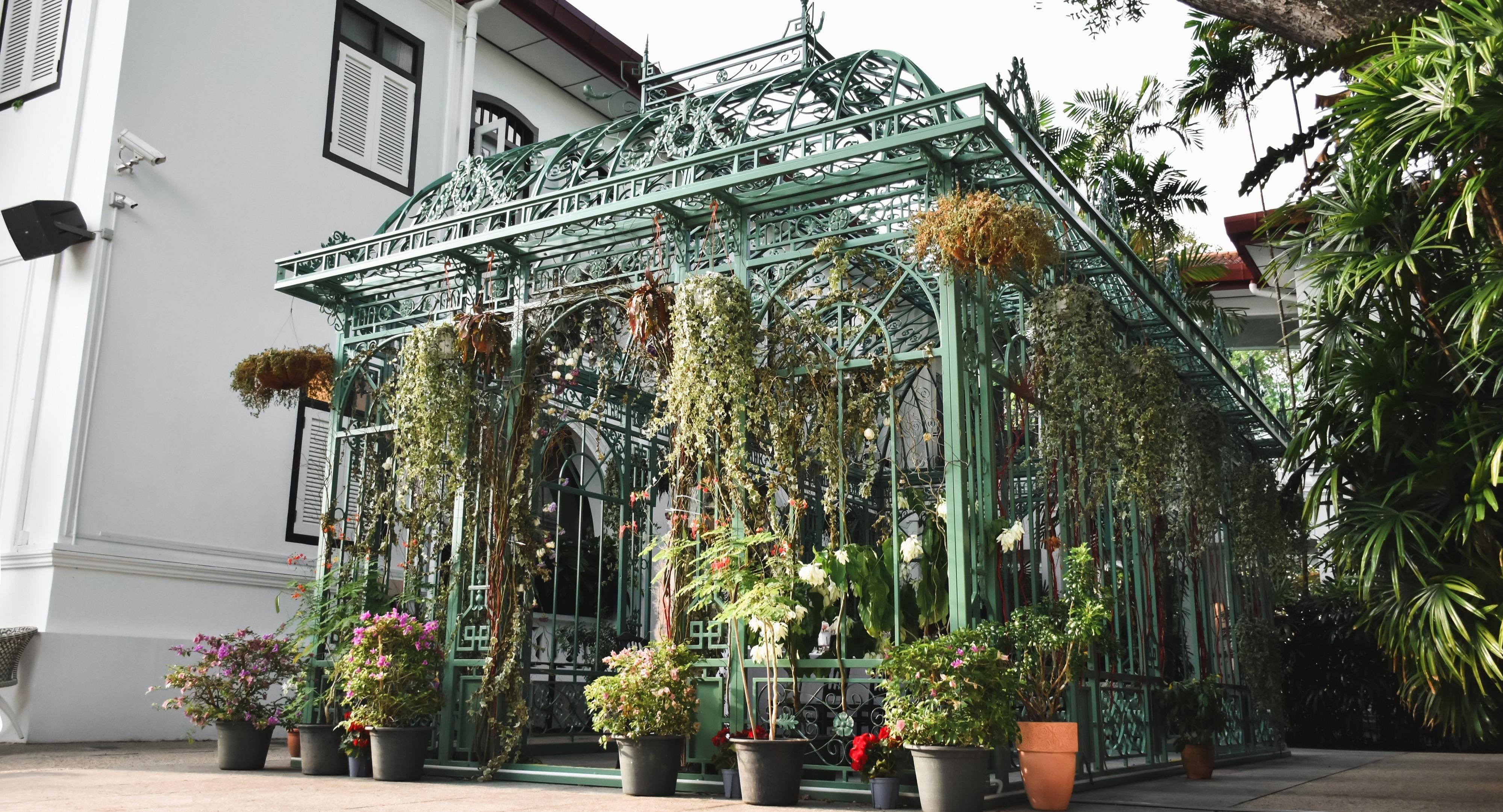 Wildseed Cafe at The Alkaff Mansion Singapore image 1
