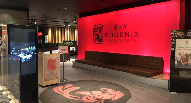 Sky Phoenix