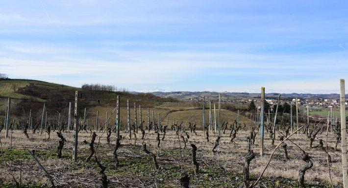 Agrivineria Cava dei Vini Asti image 13