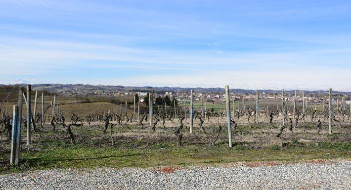 Agrivineria Cava dei Vini Asti image 12