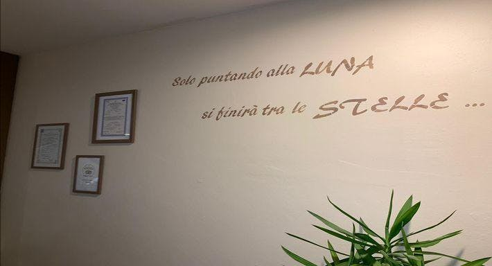 La Dea Partenope Pisa image 3
