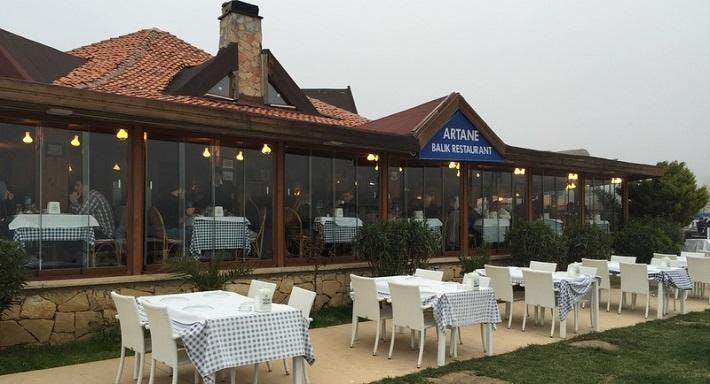 Artane Balık Restaurant İstanbul image 2