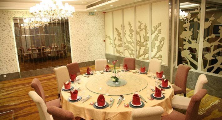 陶源酒家 Sportful Garden Restaurant - Mong Kok Hong Kong image 14