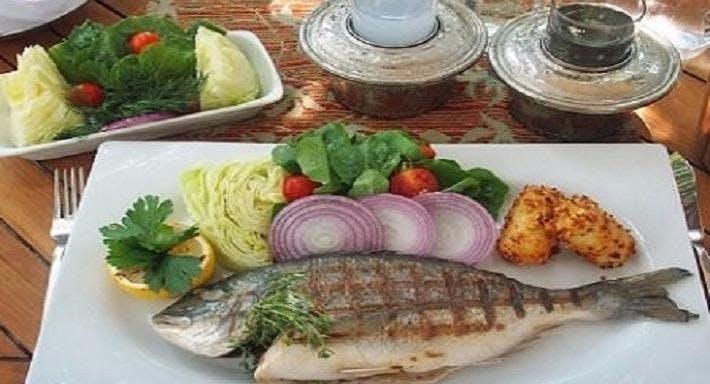 Rago Balık