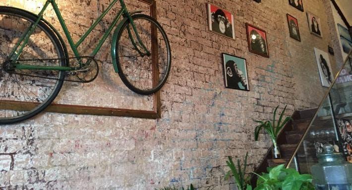 The Monkey House Cafe