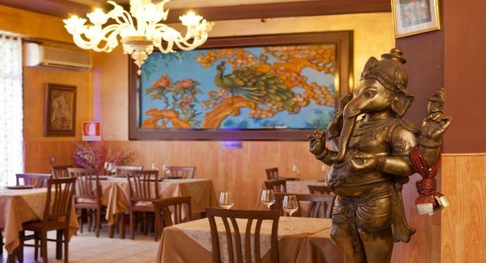 Maharani Ristorante indiano Venezia image 6