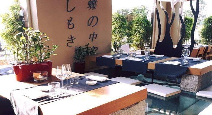 Miyama Milano image 3