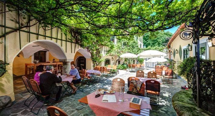 Landhaus Grinzing Wien image 1