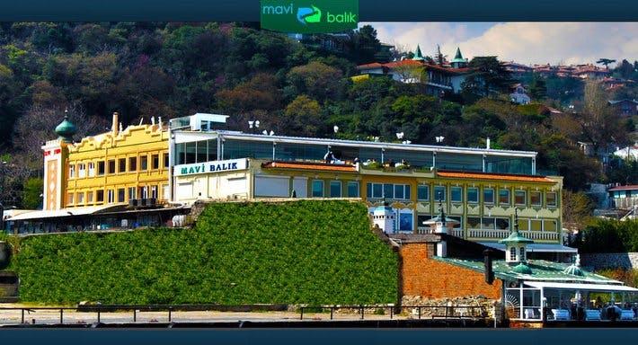 Mavi Balık İstanbul image 2