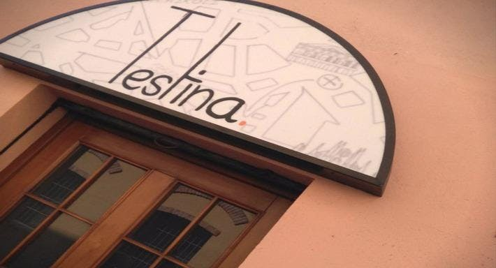 Testina Milano image 2