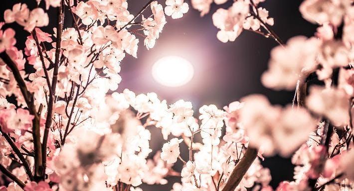 Sakura Sake Perth image 9
