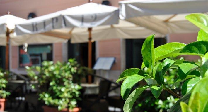 Ripa 12 Roma image 3