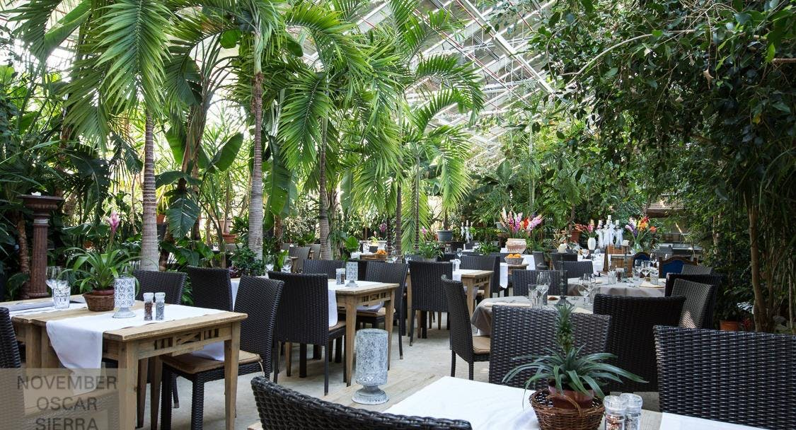 Erlebnisrestaurant Triibhuus Zurigo image 1